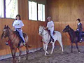 011_horse_lesson