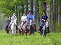 011_horse_trekking