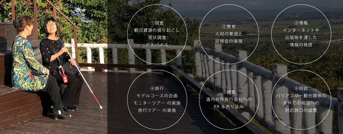バリアフリー観光コンサルティングサービスの例
